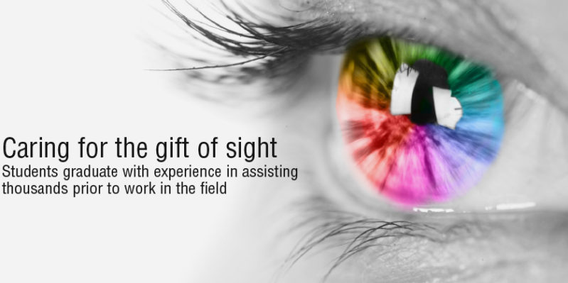 Caring for the gift of sight